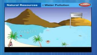 Natural resources | Class 9th CBSE Chemistry | NCERT | CBSE Syllabus | Animated Video